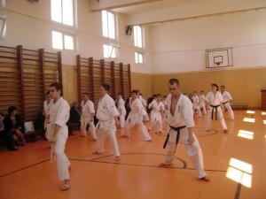 karate targu jiu adolescenti