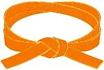 centura portocalie