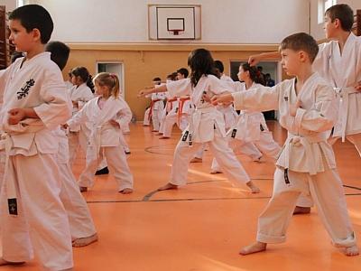 seminar si examen karate kyokushin
