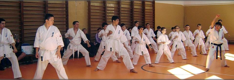 Arte martiale Targu Jiu