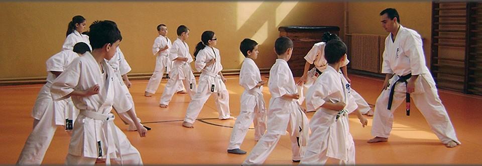 Kyokushin Targu Jiu