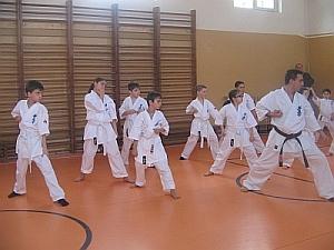karate targu jiu scolari