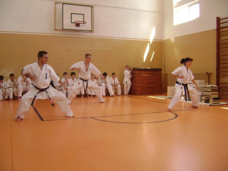 seminar karate targu jiu 4