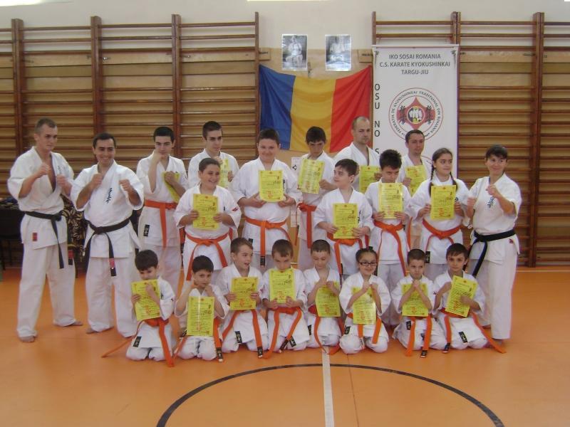 seminar examen karate targu jiu