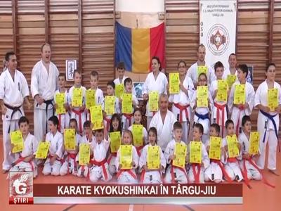 Reportaj Gorjeanul TV Targu Jiu