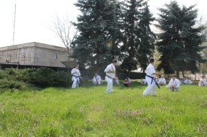 Antrenament Karate tg jiu in parc