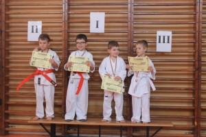 campionat aniversar karate targu jiu 13