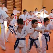 Karate Kyokushin Tg. Jiu