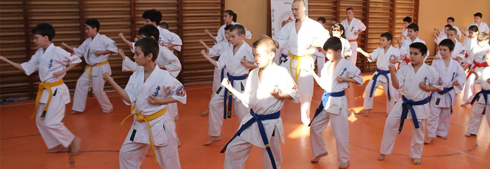 Arte martiale Tg. Jiu