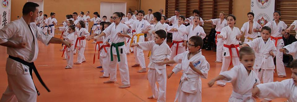 Karate copii Tg. Jiu