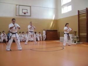 seminar karate targu jiu