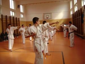 seminar arte martiale targu jiu