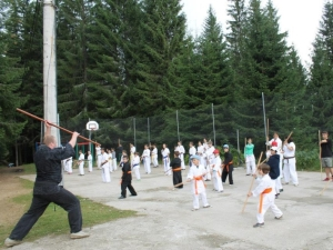 Tabara Karate, August 2014, Paltinis