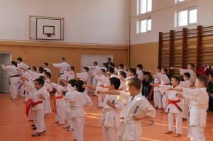 seminar aniversar karate kyokushin targu jiu