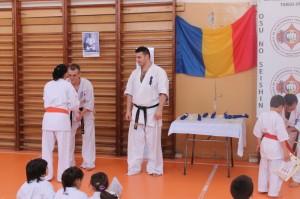 examen karate targu jiu