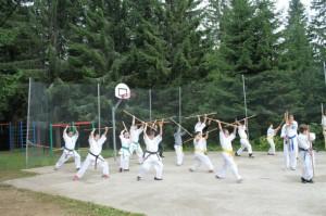 tabara karate kyokushin paltinis