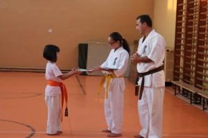 concurs cultura generala kyokushin