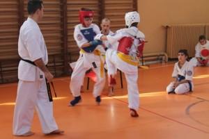 campionat aniversar karate targu jiu 3