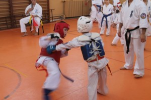 campionat aniversar karate targu jiu 4
