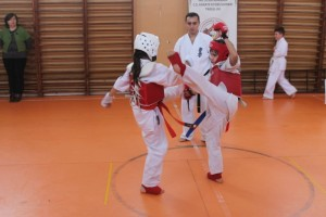 campionat aniversar karate targu jiu 5