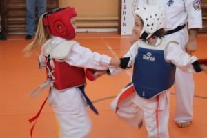 campionat aniversar karate targu jiu 6