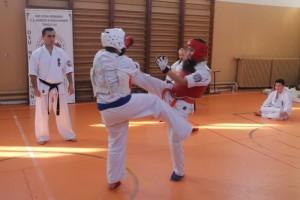 campionat aniversar karate targu jiu 7