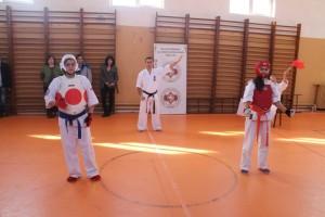 campionat aniversar karate targu jiu 8