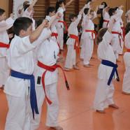 Karate Tg. Jiu