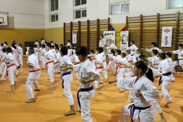 seminar karate targu jiu 8